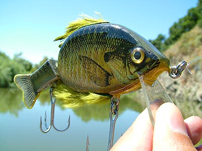 Bluegill lures images galleries with for Bluegill fishing lures