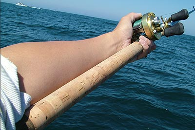 fishing rod review - gloomis pro blue saltwater rod page3, Fishing Rod