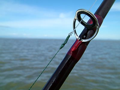 fishing knots for braided line. When fishing for bigger fish