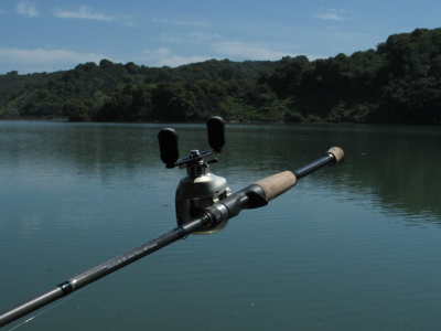 Rod review powell casting all purpose medium heavy 683c for Powell fishing rods