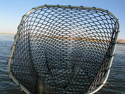Promar salmon net review rubber landing net fishing snag for Rubber fishing nets