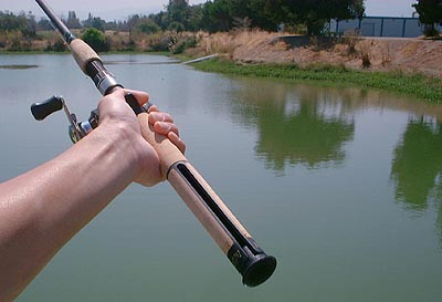 Fishing rod review walmart renegade hookhider fishing for Kids fishing poles walmart