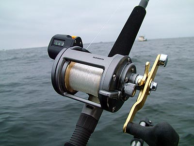 fishing reel review - shimano tekota trolling reel review, Fishing Reels