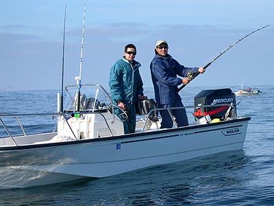 Squid squid fishing in half moon bay humboldt squid for Half moon bay fishing report