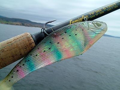 saltwater swimbaits fishing lures -storm wildeye swim baits shad, Soft Baits