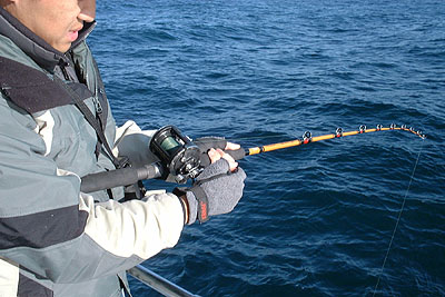 One 1 piece shakespeare tiger ugly stik 7 39 saltwater for Tiger fishing rod