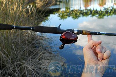 Denali jadewood fishing rod review for Denali fishing rods