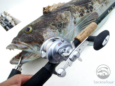 abu garcia revo inshore baitcast reel review - redfish tour, Fishing Reels