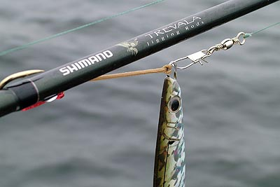 Shimano Butterfly Jig Review